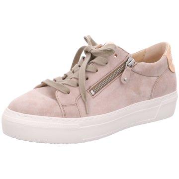 Gabor -  pink